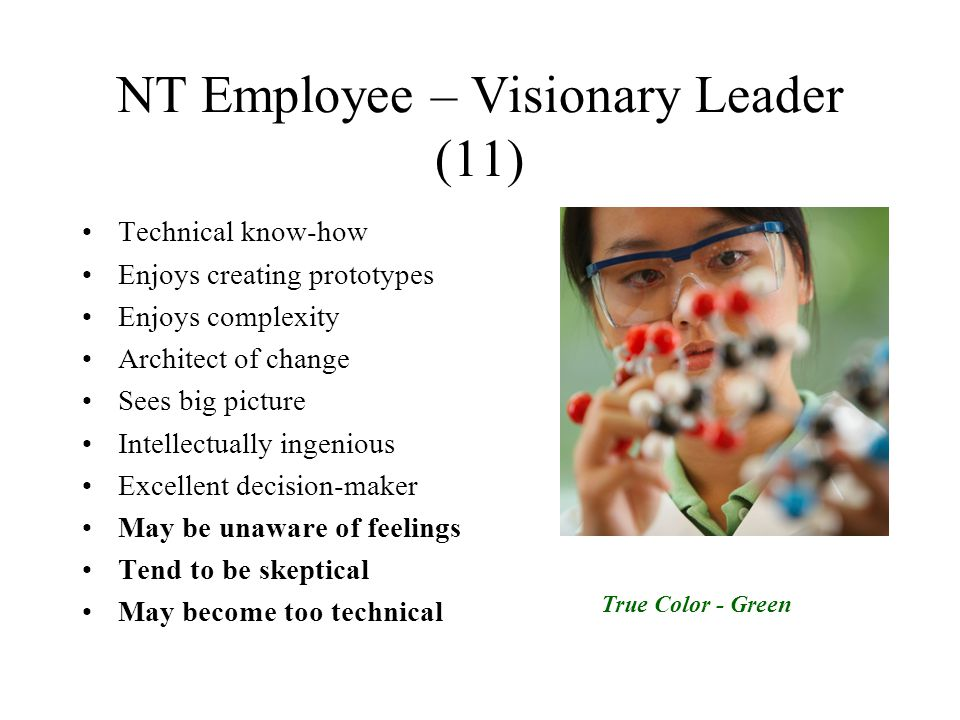 NT Employee – Visionary Leader (11) Technical know-how Enjoys creating prototypes Enjoys complexity Architect of change Sees big picture Intellectuall