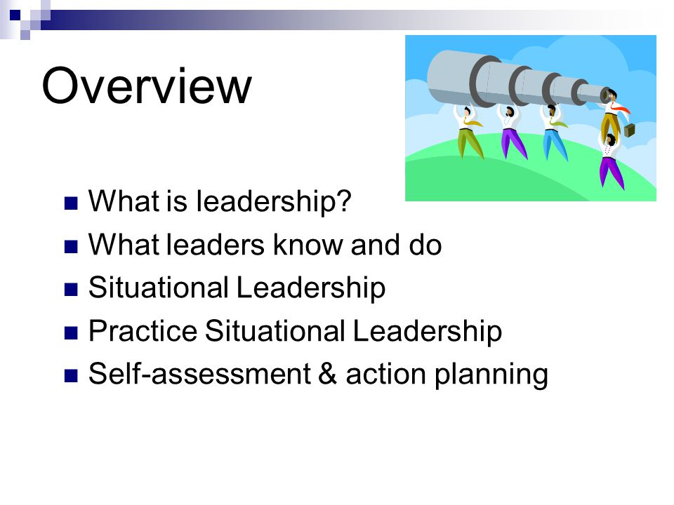 Leadership Competencies Diagnosing—understanding the situation Adapting – altering behavior and resources as needed for the situation Communicating -- interacting in a way that is understandable and effective