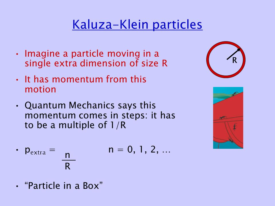 Kaluza-Klein particles Imagine a particle moving in a single extra dimension of size R It has momentum from this motion Quantum Mechanics says this momentum comes in steps: it has to be a multiple of 1/R p extra = n = 0, 1, 2, … Particle in a Box R n R