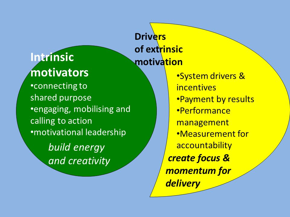 Drivers of extrinsic motivation create focus & momentum for delivery Intrinsic motivators connecting to shared purpose engaging, mobilising and calling to action motivational leadership build energy and creativity System drivers & incentives Payment by results Performance management Measurement for accountability