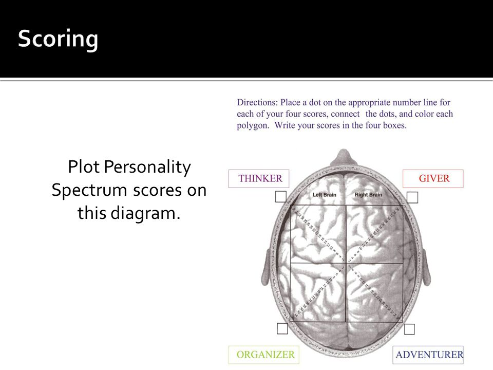  Complete the exercise and map out your strengths on the brain on the next page.