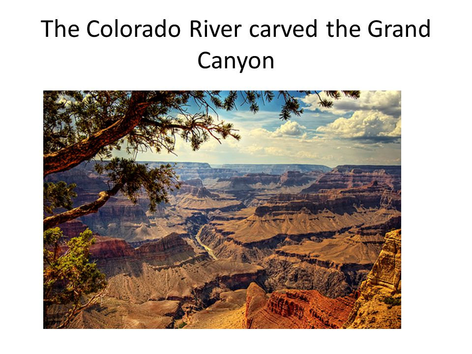 The Colorado River carved the Grand Canyon