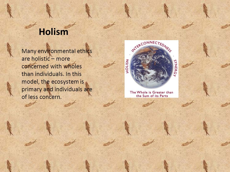 Holism Many environmental ethics are holistic – more concerned with wholes than individuals.