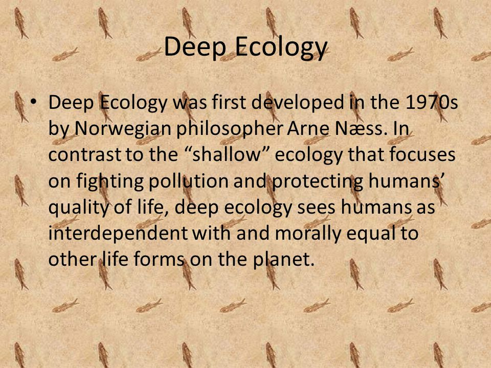 Deep Ecology Deep Ecology was first developed in the 1970s by Norwegian philosopher Arne Næss.