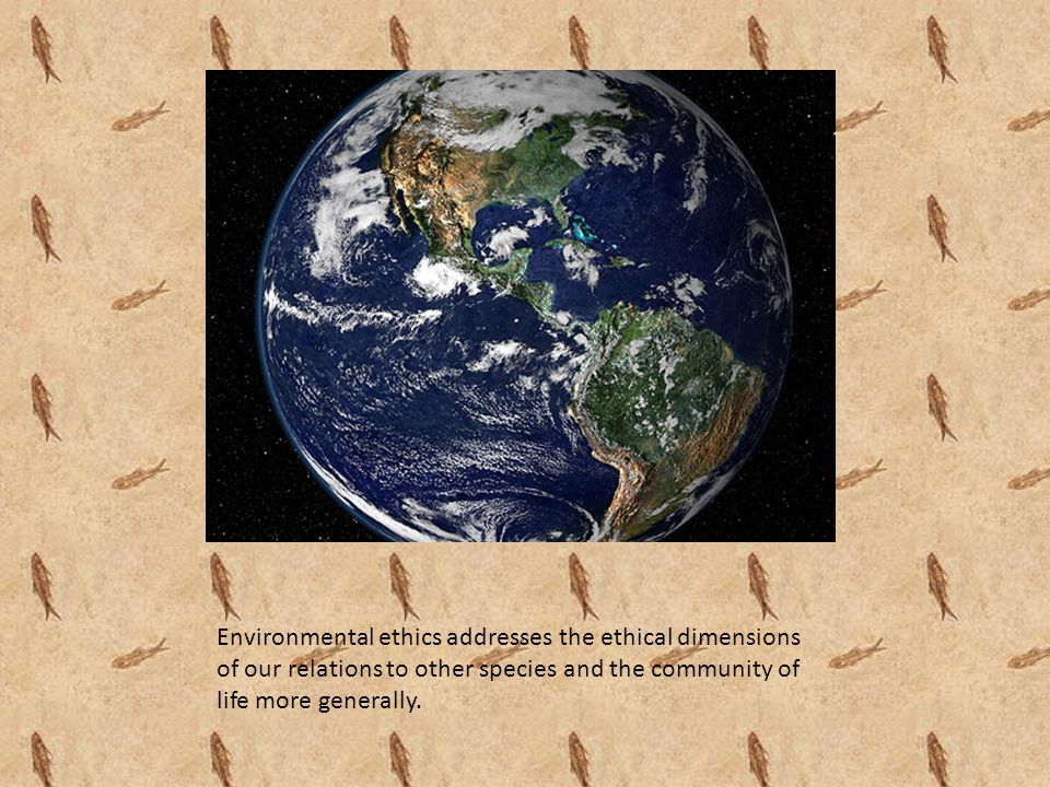 Environmental ethics and Sustainability Sustainability is sometimes seen as a synonym for environmentalism.