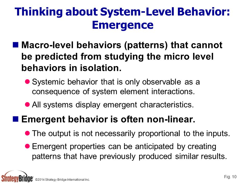 ©2014 Strategy Bridge International Inc. Thinking about System-Level Behavior: Emergence Macro-level behaviors (patterns) that cannot be predicted fro