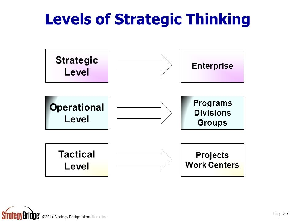 ©2014 Strategy Bridge International Inc. Levels of Strategic Thinking Strategic Level Operational Level Tactical Level Enterprise Programs Divisions G