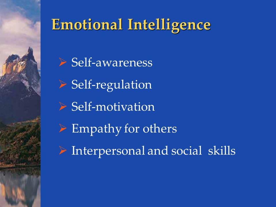 Emotional Intelligence  Self-awareness  Self-regulation  Self-motivation  Empathy for others  Interpersonal and social skills