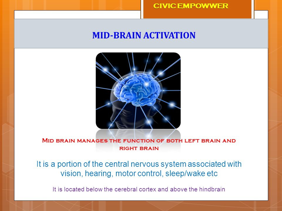 Mid brain manages the function of both left brain and right brain It is a portion of the central nervous system associated with vision, hearing, motor control, sleep/wake etc It is located below the cerebral cortex and above the hindbrain MID-BRAIN ACTIVATION CIVIC EMPOWWER