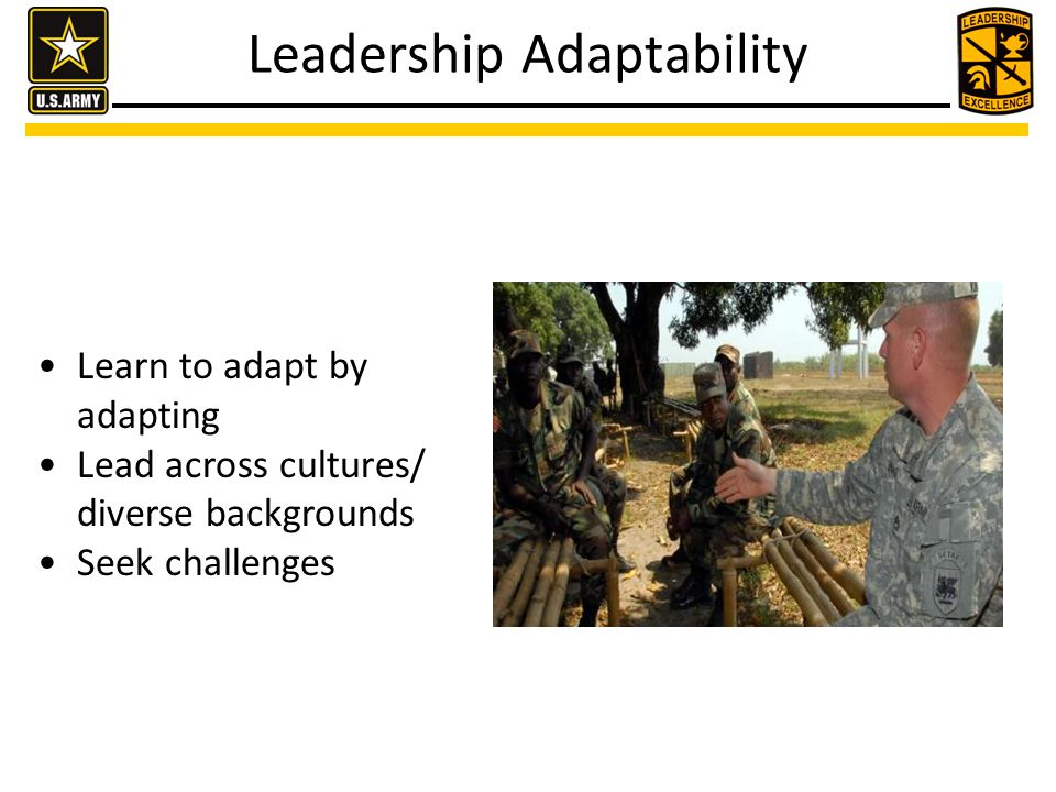 Learn to adapt by adapting Lead across cultures/ diverse backgrounds Seek challenges Leadership Adaptability