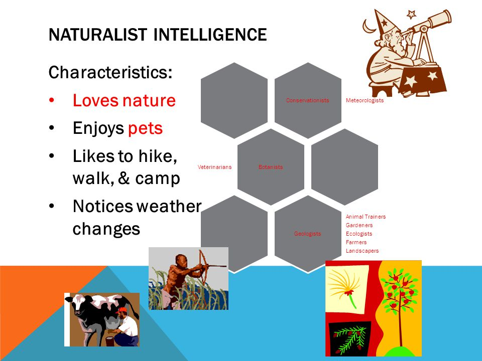 Characteristics: Loves nature Enjoys pets Likes to hike, walk, & camp Notices weather changes Conservationists Meteorologists Botanists Veterinarians