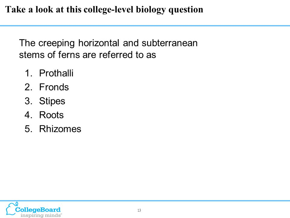 13 Take a look at this college-level biology question  Prothalli  Fronds  Stipes  Roots  Rhizomes The creeping horizontal and subterranean stems of ferns are referred to as