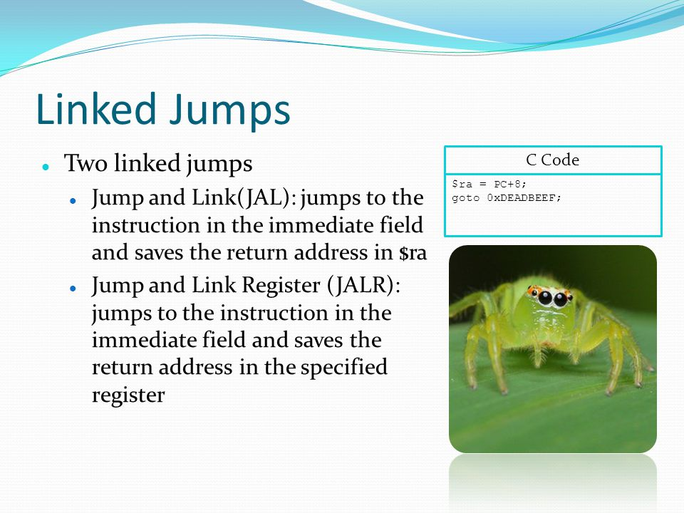 Linked Jumps Two linked jumps Jump and Link(JAL): jumps to the instruction in the immediate field and saves the return address in $ra Jump and Link Register (JALR): jumps to the instruction in the immediate field and saves the return address in the specified register $ra = PC+8; goto 0xDEADBEEF; C Code