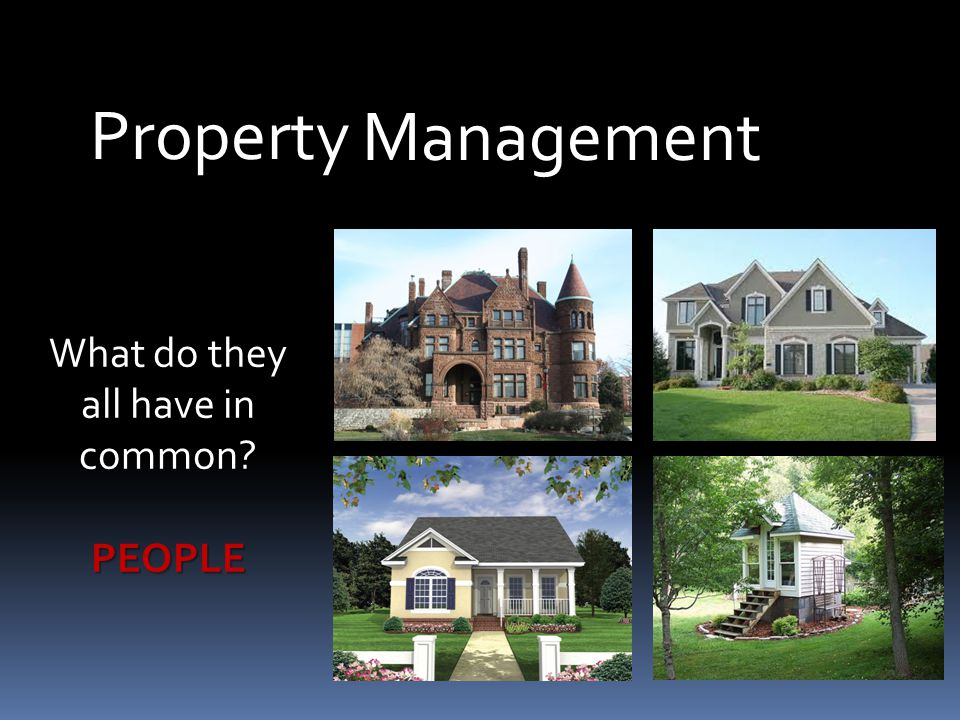 Management Property What do they all have in common PEOPLE