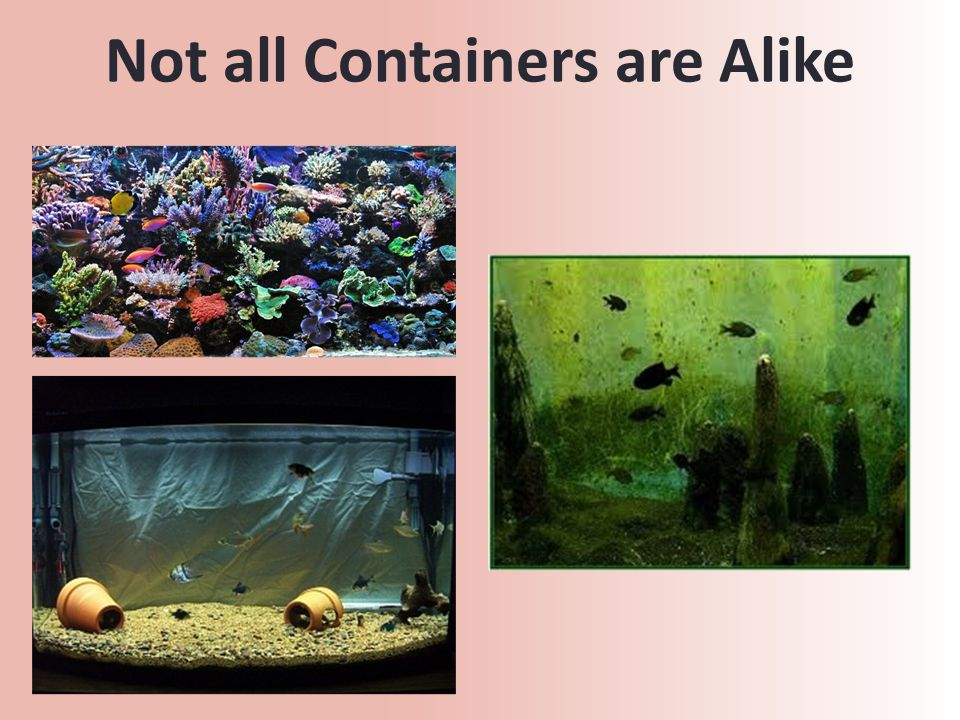 Not all Containers are Alike