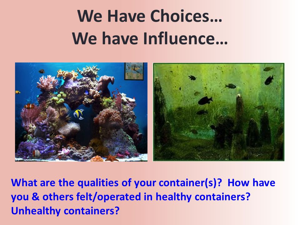 We Have Choices… We have Influence… What are the qualities of your container(s).
