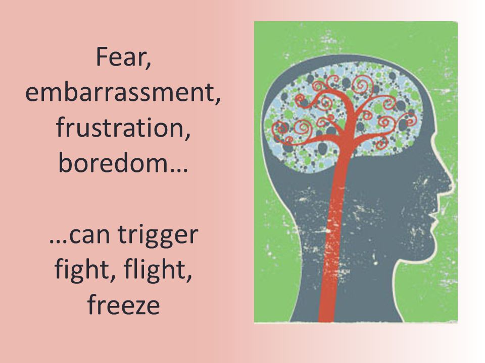 Fear, embarrassment, frustration, boredom… …can trigger fight, flight, freeze