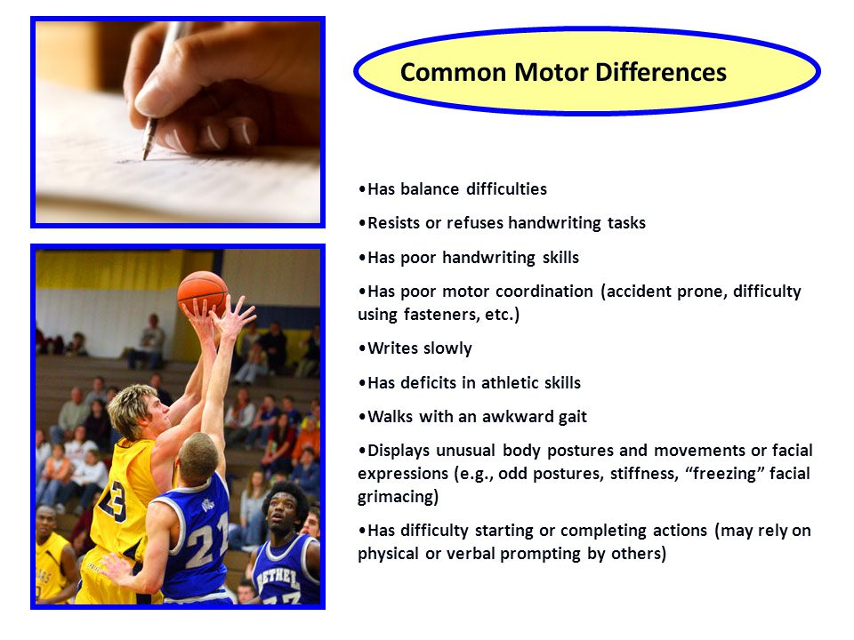 Common Motor Differences Has balance difficulties Resists or refuses handwriting tasks Has poor handwriting skills Has poor motor coordination (accident prone, difficulty using fasteners, etc.) Writes slowly Has deficits in athletic skills Walks with an awkward gait Displays unusual body postures and movements or facial expressions (e.g., odd postures, stiffness, freezing facial grimacing) Has difficulty starting or completing actions (may rely on physical or verbal prompting by others)
