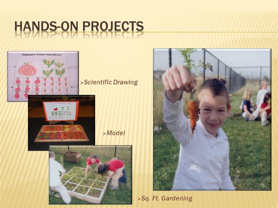  Scientific Drawing  Model  Sq. Ft. Gardening
