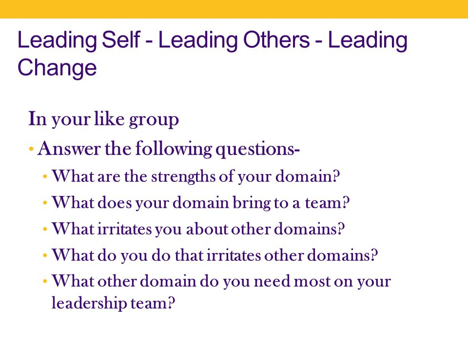 Leading Self - Leading Others - Leading Change In your like group Answer the following questions- What are the strengths of your domain.