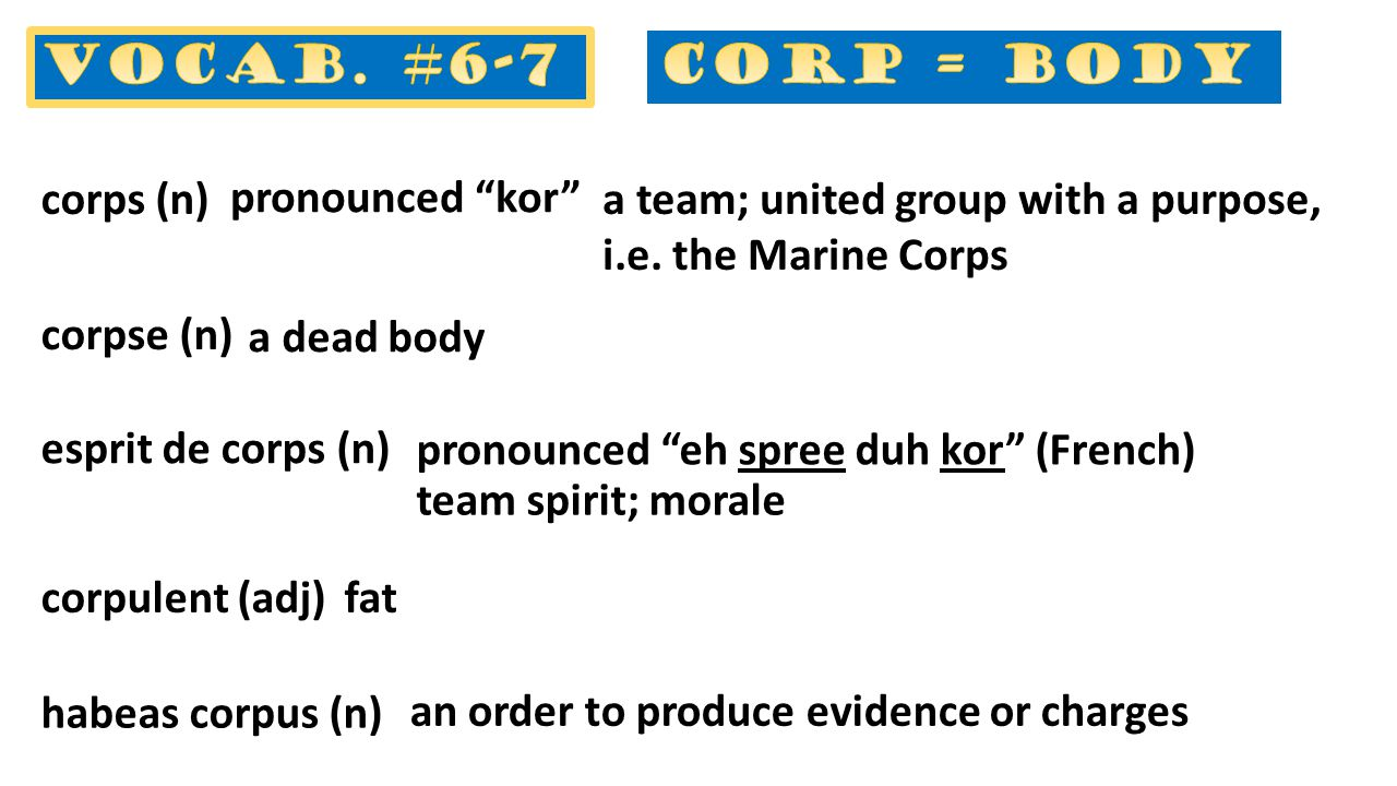 a team; united group with a purpose, i.e. the Marine Corps corps (n) corpse (n) a dead body esprit de corps (n) team spirit; morale corpulent (adj)fat