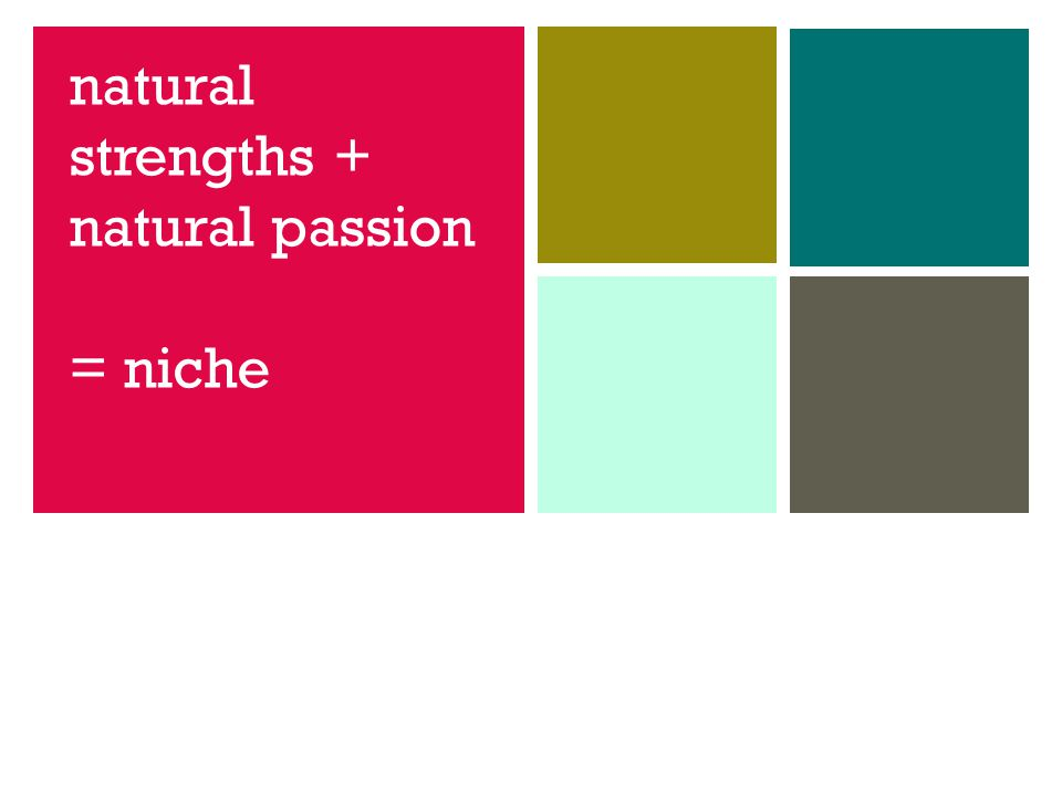 natural strengths + natural passion = niche
