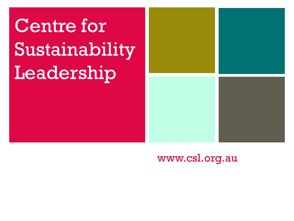 www.csl.org.au Centre for Sustainability Leadership