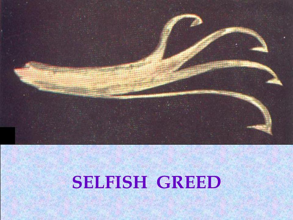 SELFISH GREED