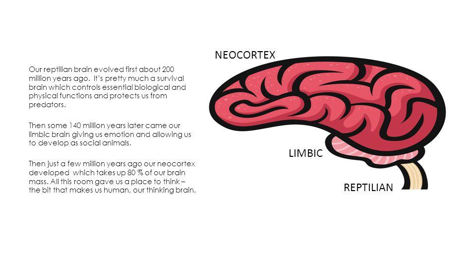 Our brain has two hemispheres.
