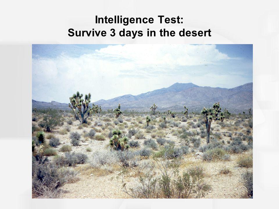 Intelligence Test: Survive 3 days in the desert