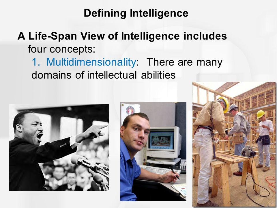 Defining Intelligence 2.
