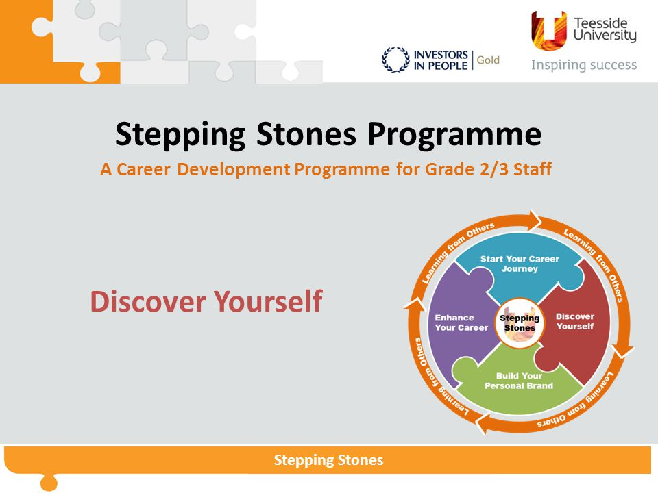Stepping StonesStepping Stones Programme Stepping Stones Stepping Stones Programme A Career Development Programme for Grade 2/3 Staff Discover Yoursel