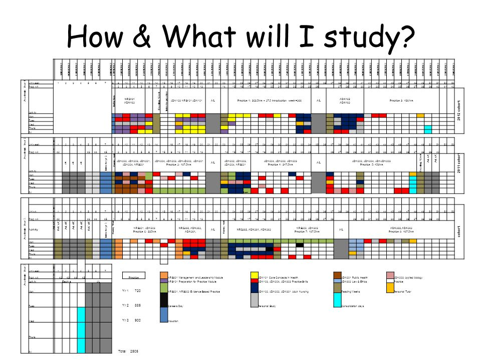 How & What will I study.