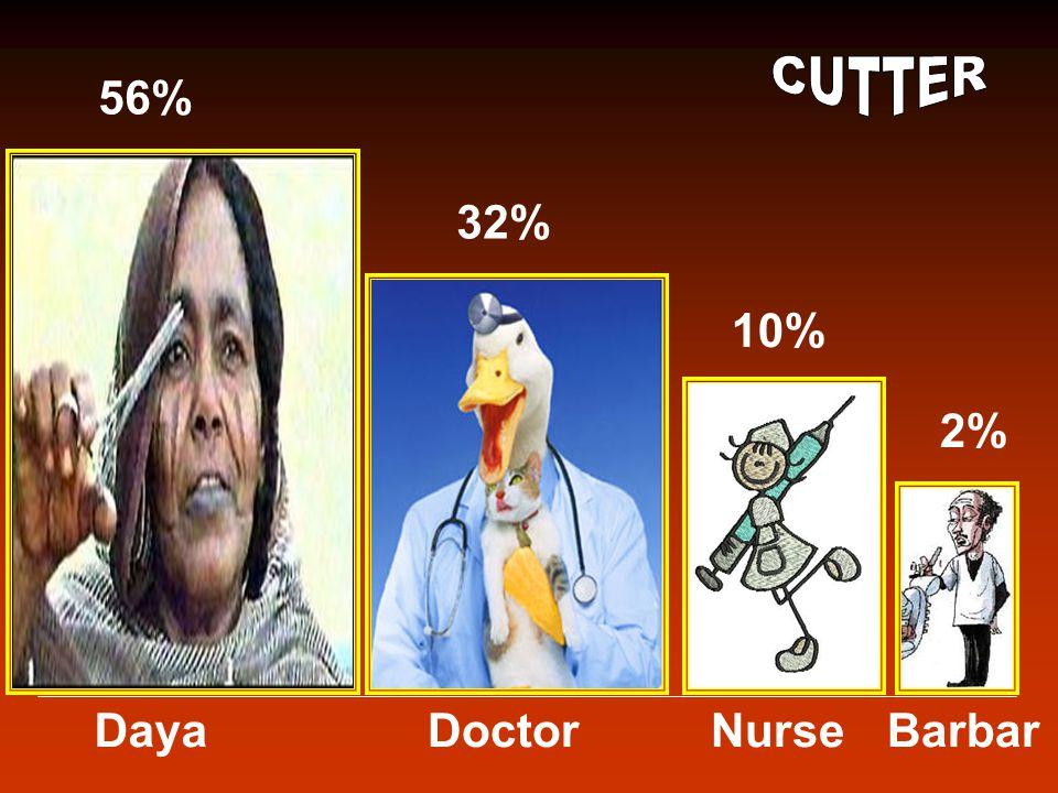 DayaDoctorNurseBarbar 56% 32% 10% 2%
