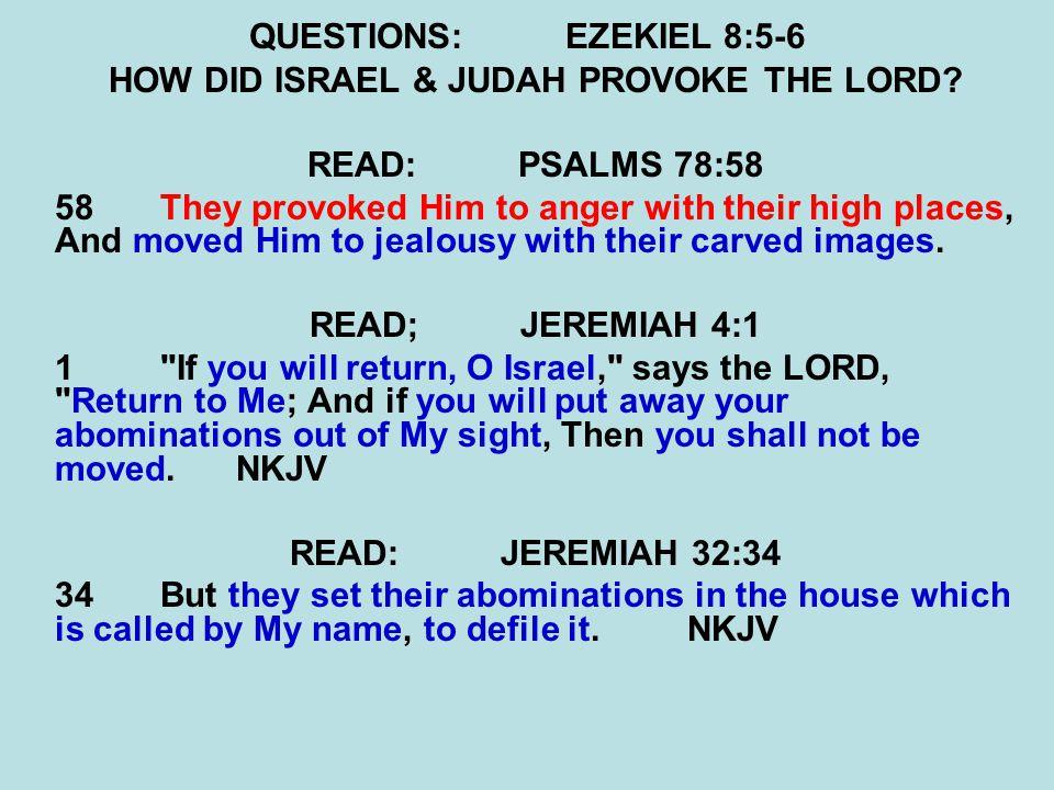 QUESTIONS:EZEKIEL 8:5-6 HOW DID ISRAEL & JUDAH PROVOKE THE LORD.