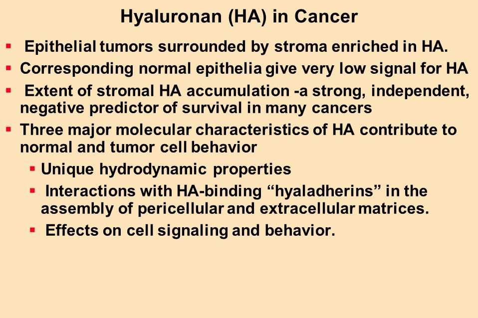 Hyaluronan (HA) in Cancer  Epithelial tumors surrounded by stroma enriched in HA.  Corresponding normal epithelia give very low signal for HA  Exte
