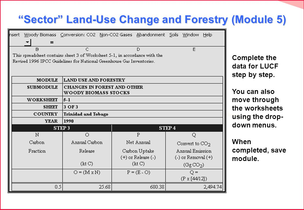 Sector Land-Use Change and Forestry (Module 5) Complete the data for LUCF step by step.
