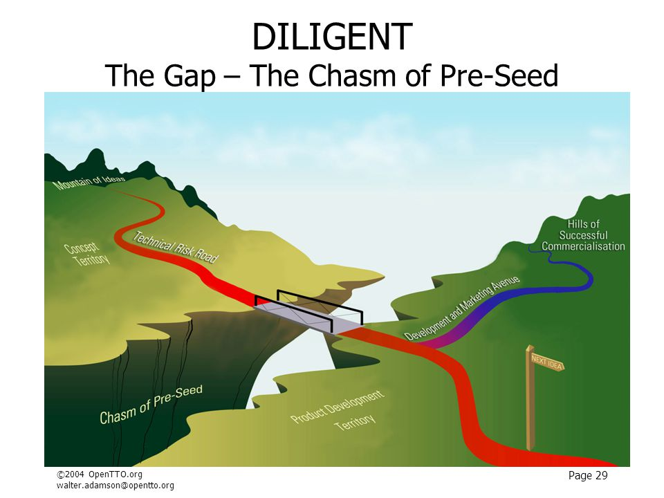 ©2004 OpenTTO.org walter.adamson@opentto.org Page 29 DILIGENT The Gap – The Chasm of Pre-Seed