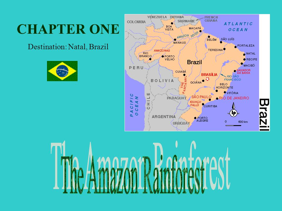 Chapter One: Latin America Chapter Two: Sub-Saharan Africa Chapter Three: Middle East Chapter Four: Europe Chapter Five: Asia Chapter Six: Australia/New Zealand Click on the bullet to view a chapter