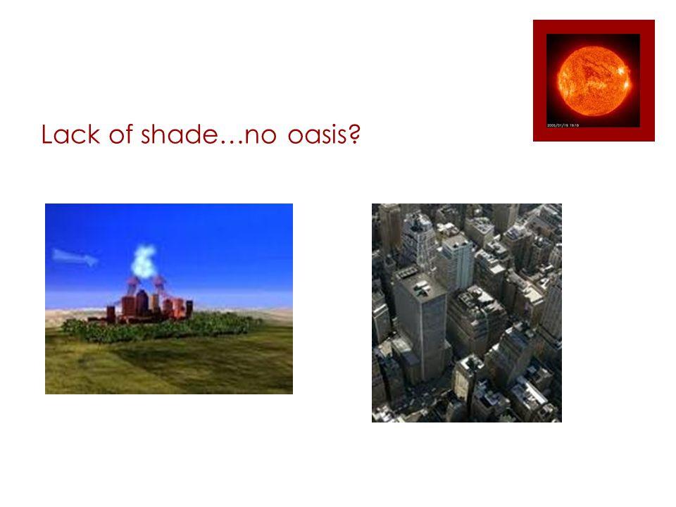 Lack of shade…no oasis?