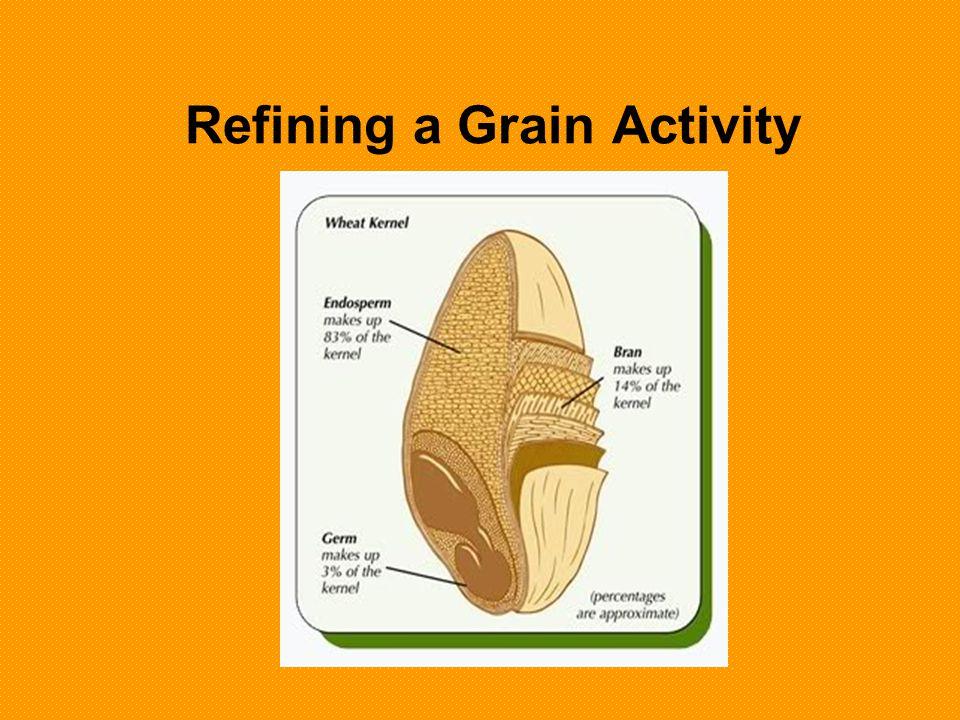 Refining a Grain Activity