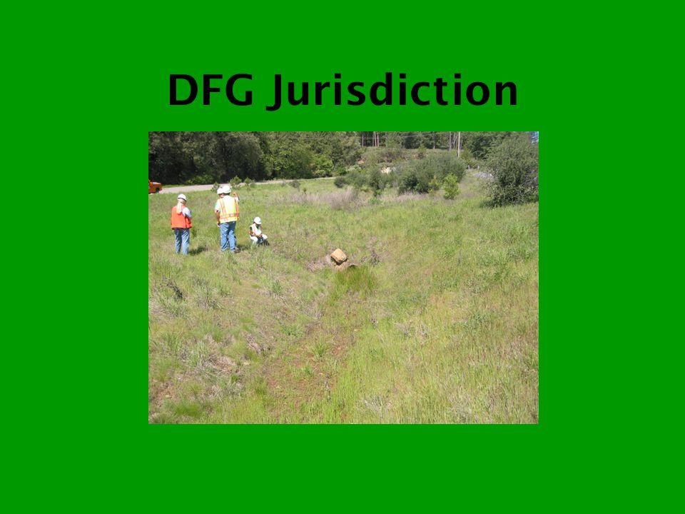 DFG Jurisdiction