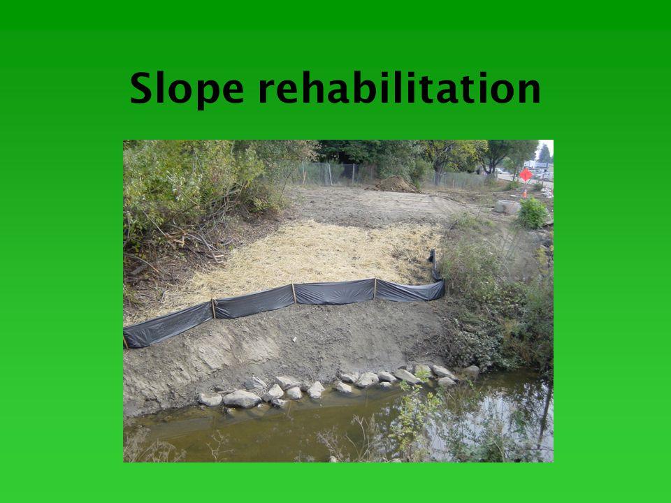 Slope rehabilitation