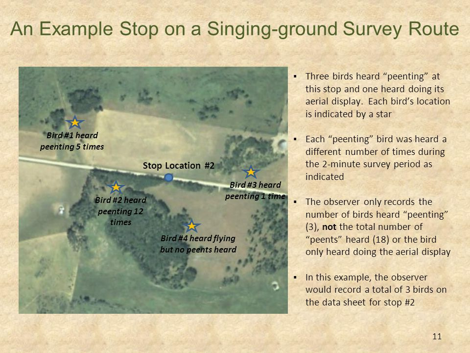 Calculating sunset & survey window (start to finish times) 1.Determine the date you will run the survey.