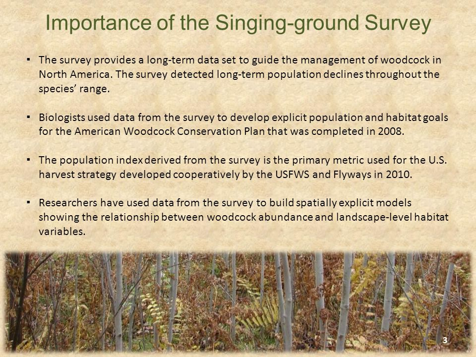 ▪The Singing-ground survey, in its present form, began in 1968.
