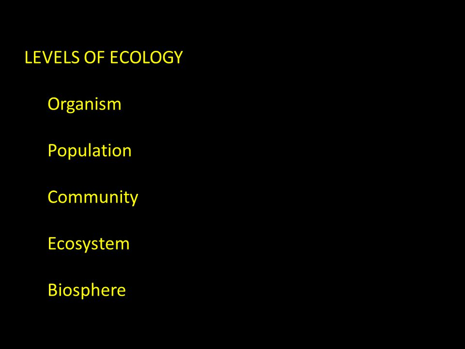 LEVELS OF ECOLOGY Organism Population Community Ecosystem Biosphere