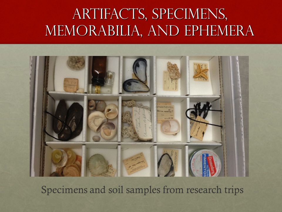 Artifacts, Specimens, Memorabilia, and Ephemera Specimens and soil samples from research trips