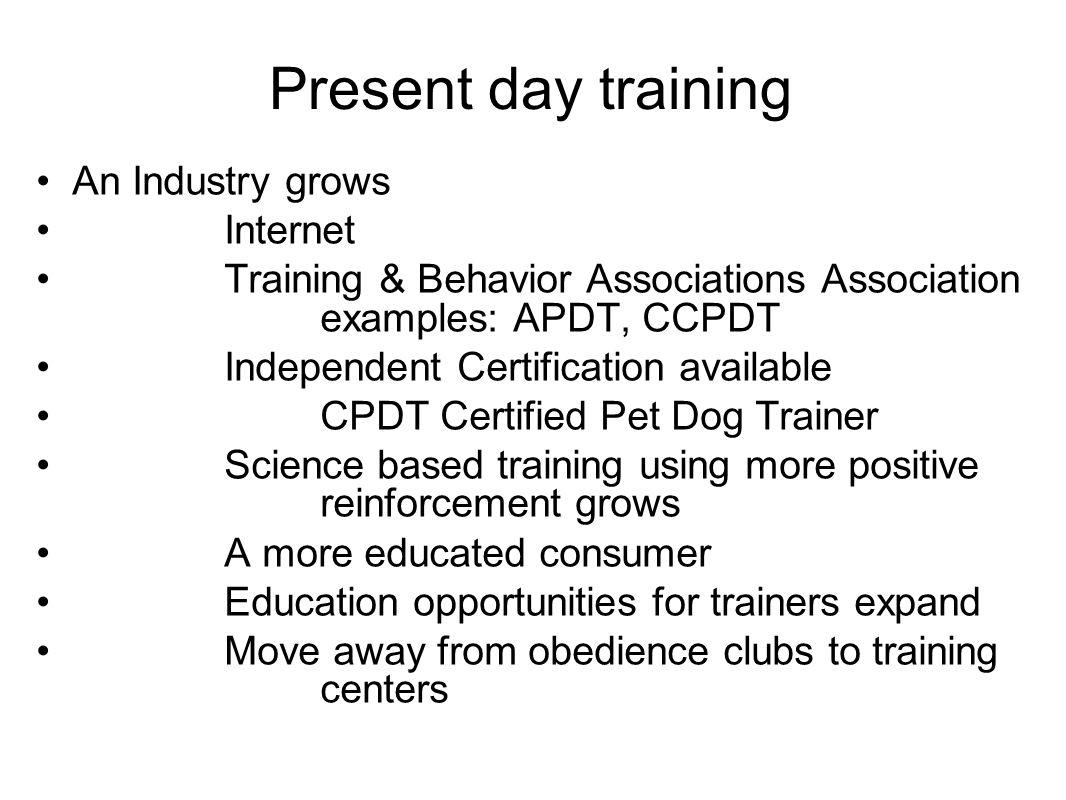 Present day training An Industry grows Internet Training & Behavior Associations Association examples: APDT, CCPDT Independent Certification available CPDT Certified Pet Dog Trainer Science based training using more positive reinforcement grows A more educated consumer Education opportunities for trainers expand Move away from obedience clubs to training centers