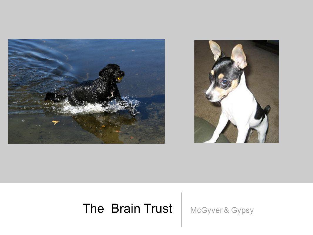 The Brain Trust McGyver & Gypsy