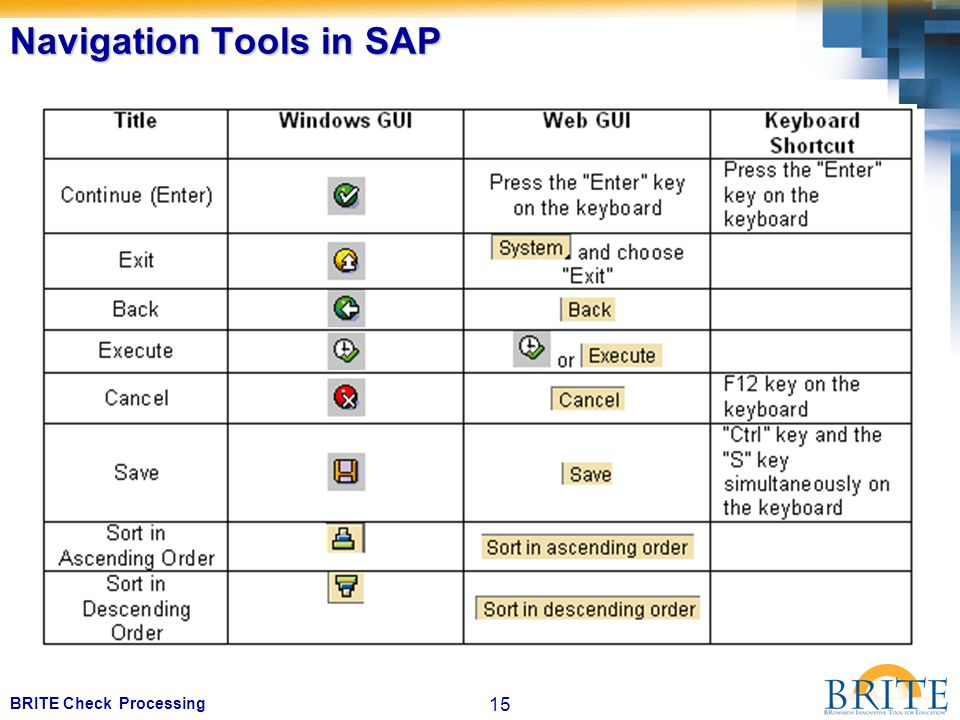 15 BRITE Check Processing Navigation Tools in SAP
